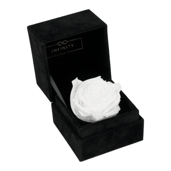 Single Velvet Pure White Produktbild