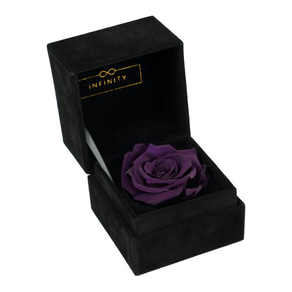 Single Velvet Violett Produktbild