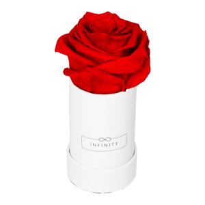 Produktbild Extra Small weiß Vibrant Red
