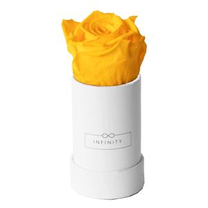 Produktbild Sunny Yellow