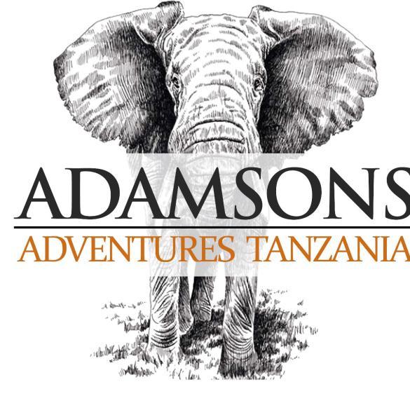 Adamsons Adventure Logo