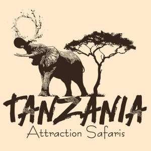 Tanzania attractions safaris