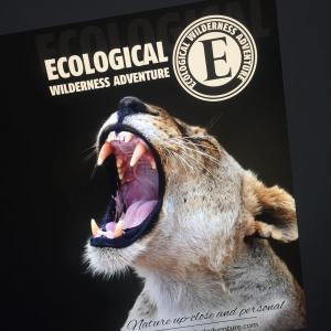 Ecological Adventure Flyer/ Brochure