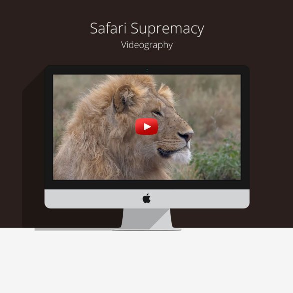 Safari supremacy video