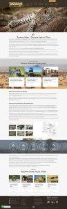 Safaris in Tanzania Website