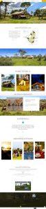 Serengeti Savannah Camps Website