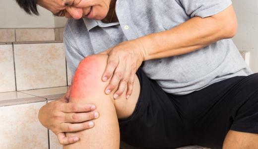 関節痛に有用なコンドロイチンが含まれる食品について