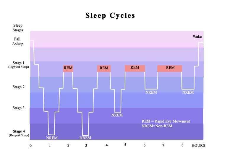 漫画⑯】睡眠負債って知っていますか?|静岡市のカイロプラクティック施術整体