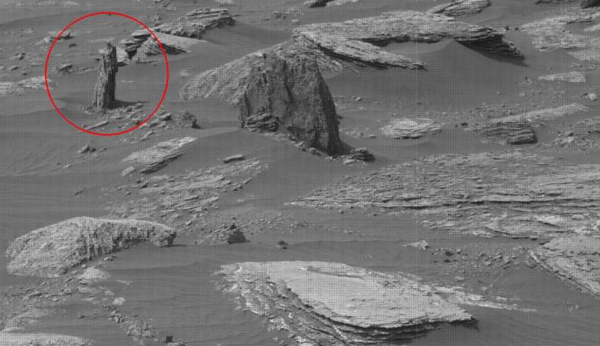 NASA image shows the remains of a petrified tree on Mars