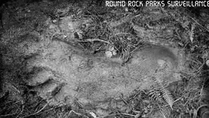 Department of Parks officials post evidence of Bigfoot in Texas