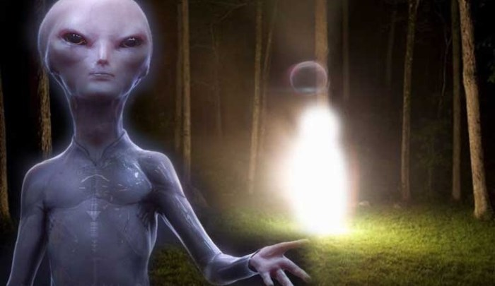 "The MUFON World UFO Center receives a strange report from an ""Extraterrestrial Entity"""