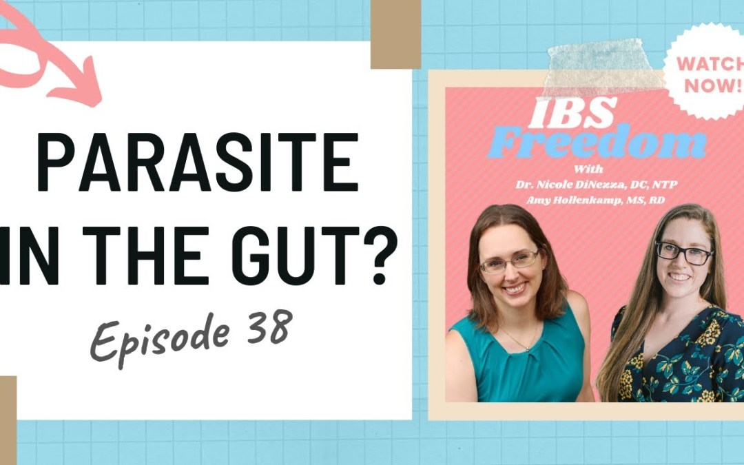Parasite in the Gut? (Testing, treatment, giardia, blastocysts and more!) #38