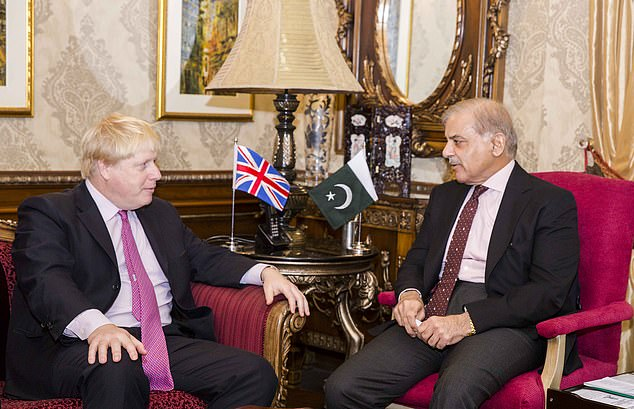 Shahbaz's son-in-law embezzled quake victims aid money sent by UK: Daily Mail
