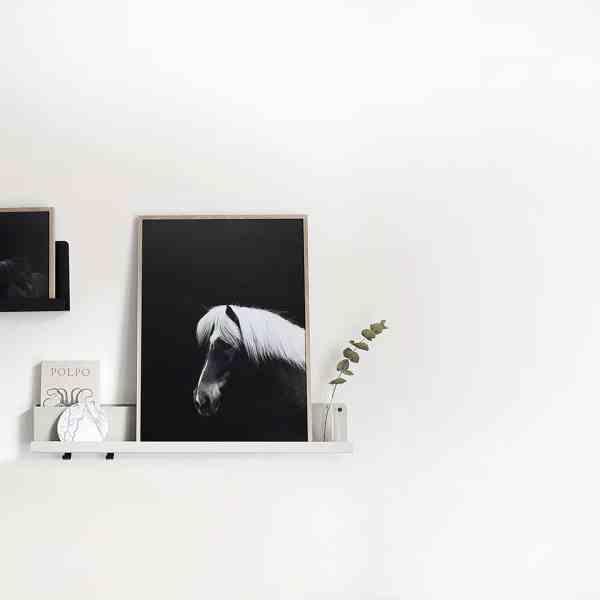Affiche poster cheval, Hestur noir blanc sombre