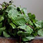 つるむらさきの食べ方とゆで方 栄養豊富な夏野菜