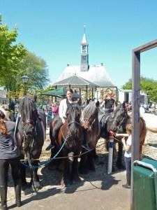 Pferde mit Ringreitern vor Kirche in Koudekerke