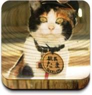 叫TAMA的貓…
