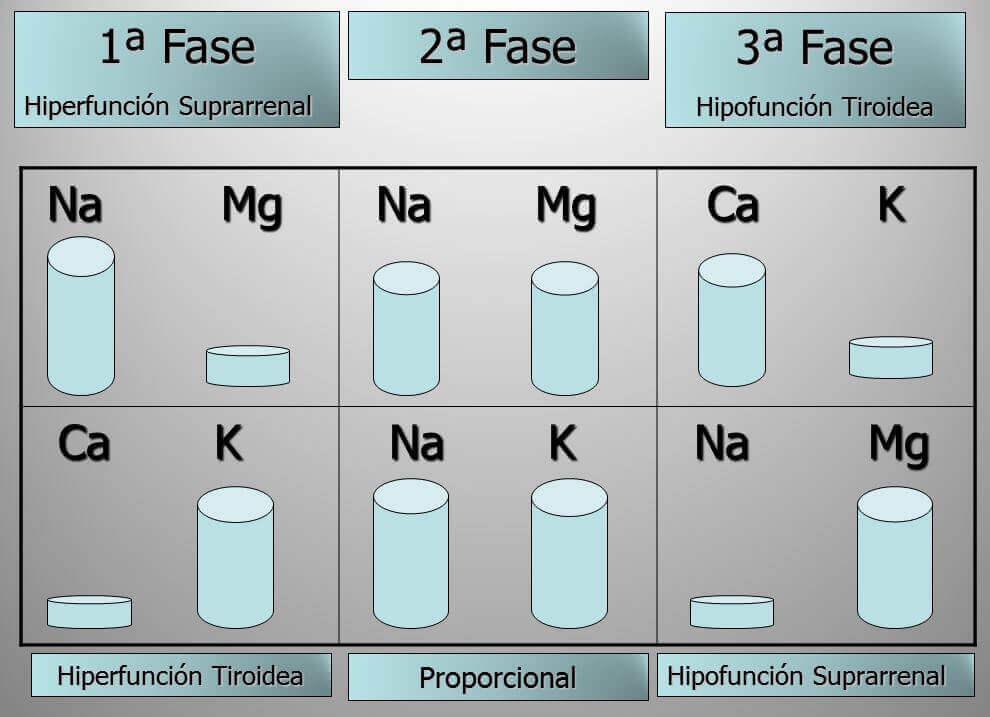 Centro-mineralograma-del-cabello-eixample