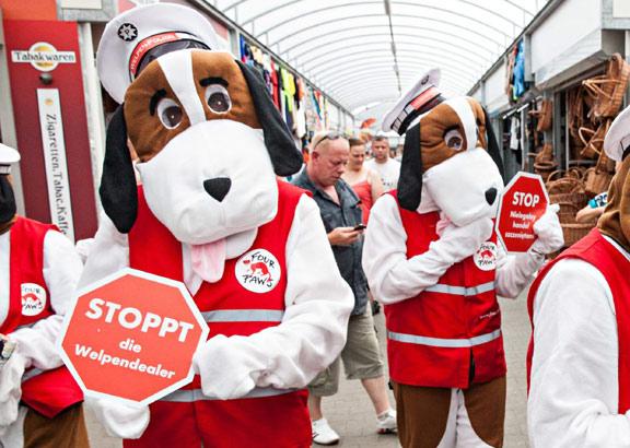 Aktion von VIER PFOTEN gegen Welpenhandel im Jahr 2013.