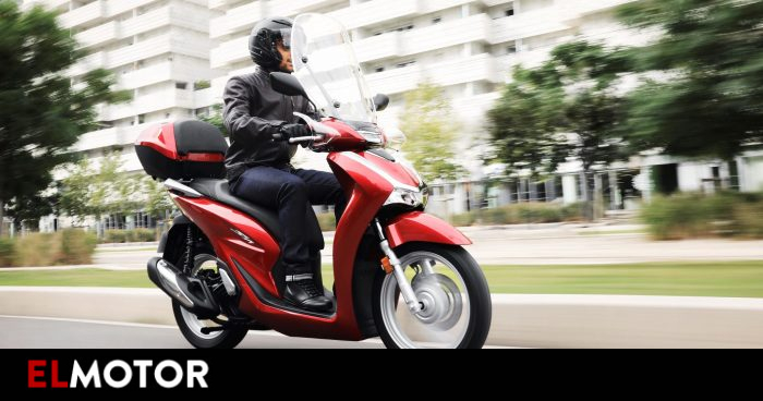 The popular Honda Scoopy is renewed and is available for 3,800 euros |  Motorcycles
