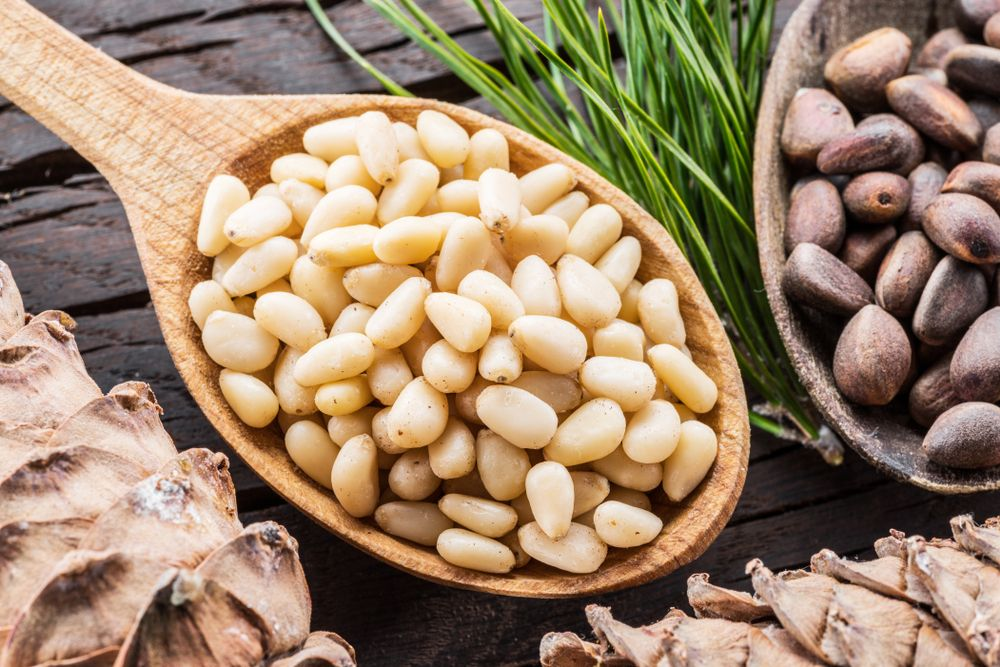 All About Pine Nuts