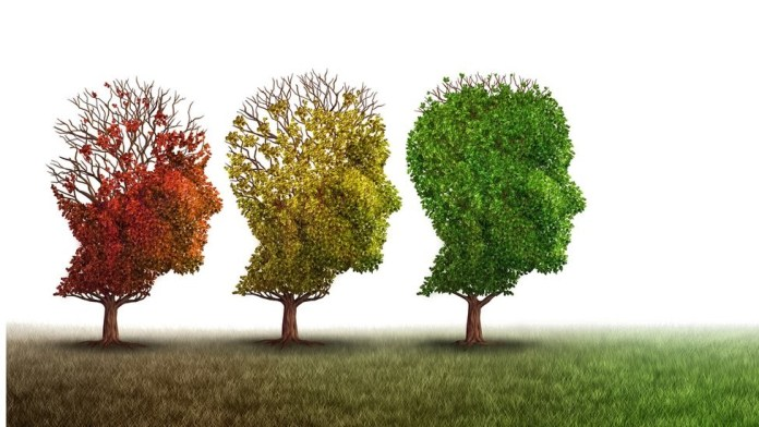 What Is Brain Aging? Measures To Slow Down Brain Aging