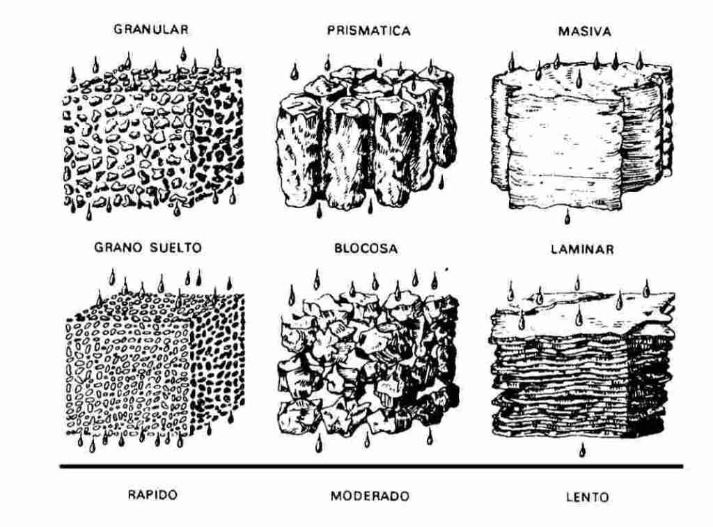estructura del suelo y la infiltración