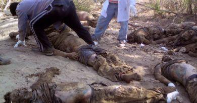 177-cadaveres-en-tamaulipas