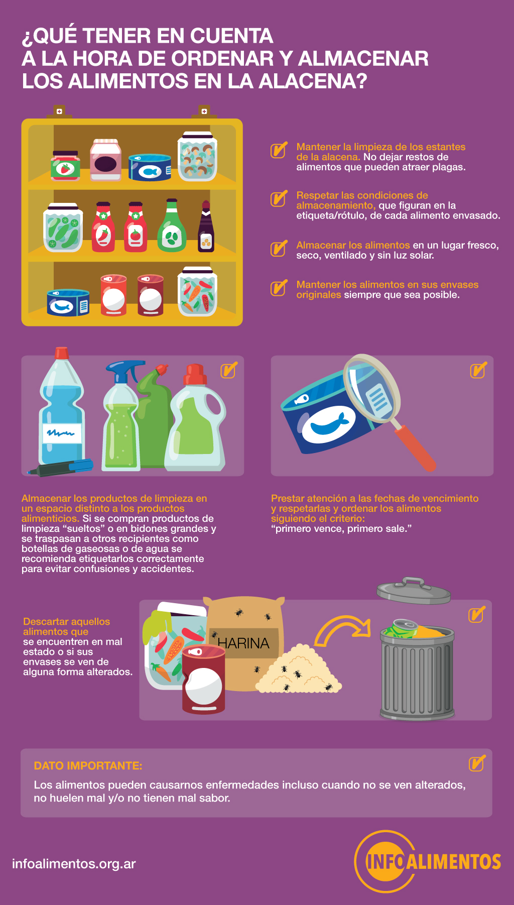 Infografia alimentos alacena