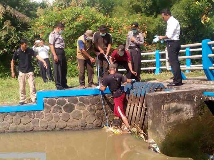Penemuan Mayat di Lodogung, Jimbe Kademangan