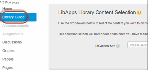 """""""Library Guide"""" button on site navigation bar circled in red for emphasis."""