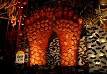 Farmer Protest Theme Durga Puja Pandal in West Bengal