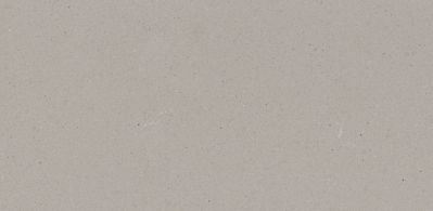 Raw Concrete 4004