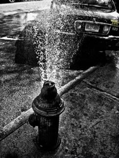 Salvo Genovessi, Car Wash, 2010
