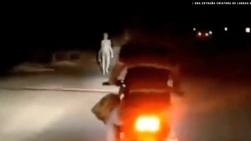 Video: aparece una extraña criatura de largas extremidades en plena calle