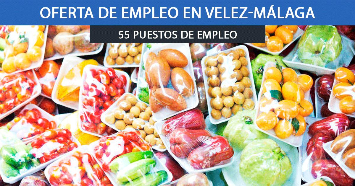 Se necesitan 55 trabajadores para envasar verdura en Vélez Málaga