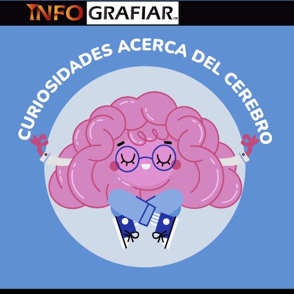 11 curiosidades sobre el cerebro