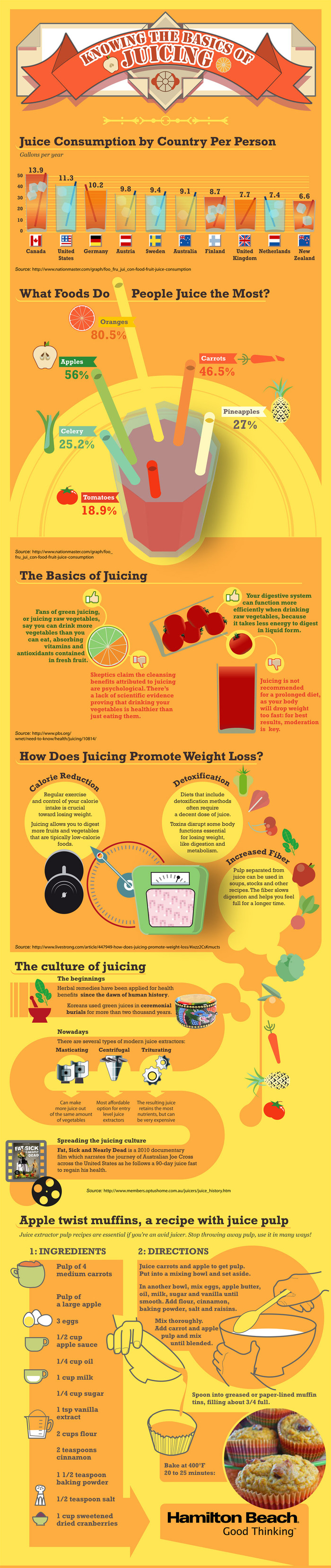 Knowing the Basics of Juicing