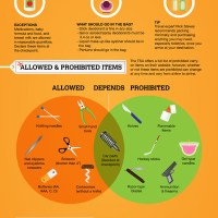 TSA Packing Tips & Guidelines Infographic