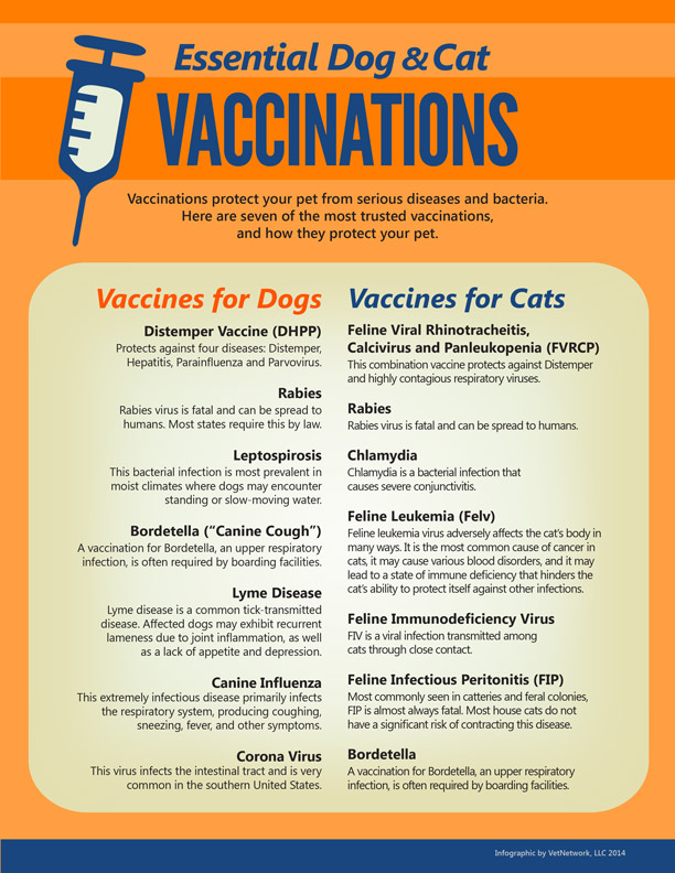 infographic_vaccinations