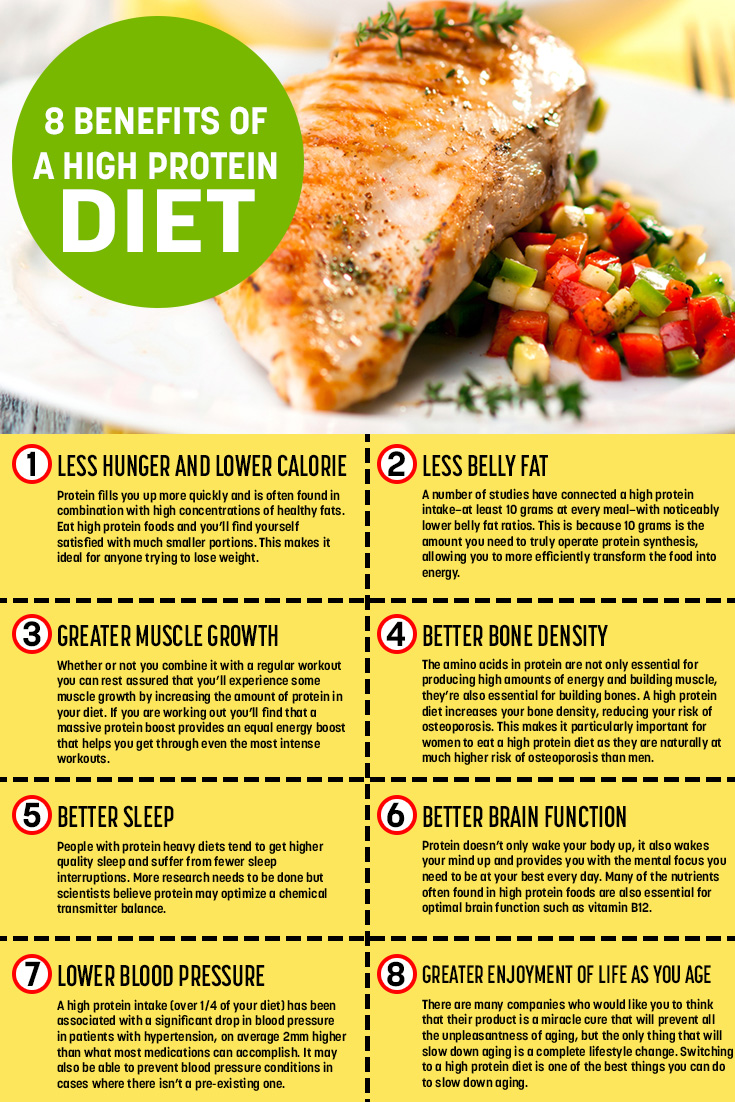 The Benefits of a High Protein Diet [Infographic]