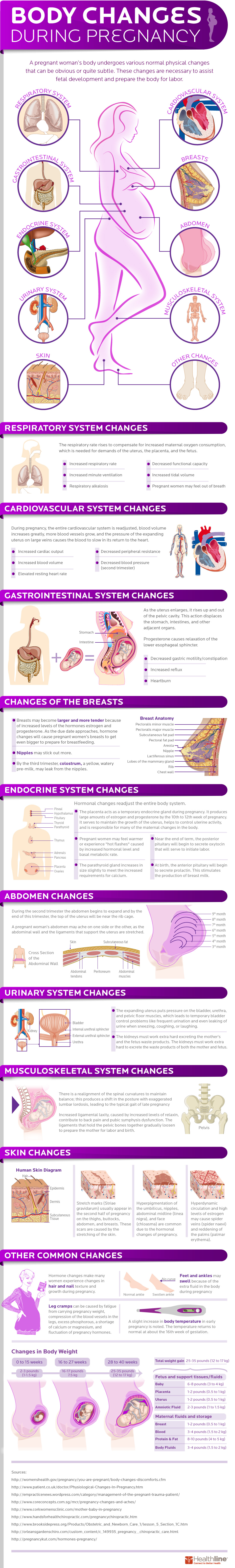 Body Changes During Pregnancy [INFOGRAPHIC] – Infographic List