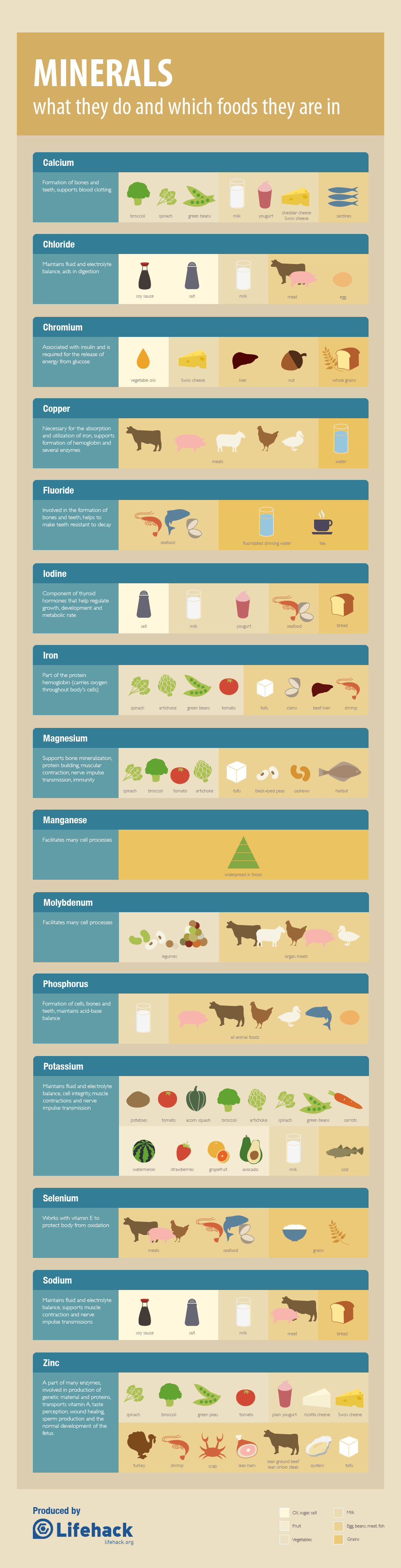 nutrition-minerals-cheat-sheet--food-sources_50cadd535f100