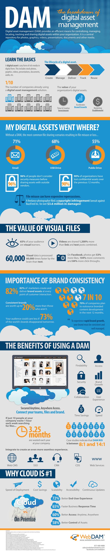 digital-asset-management-infographic_5258521e84566