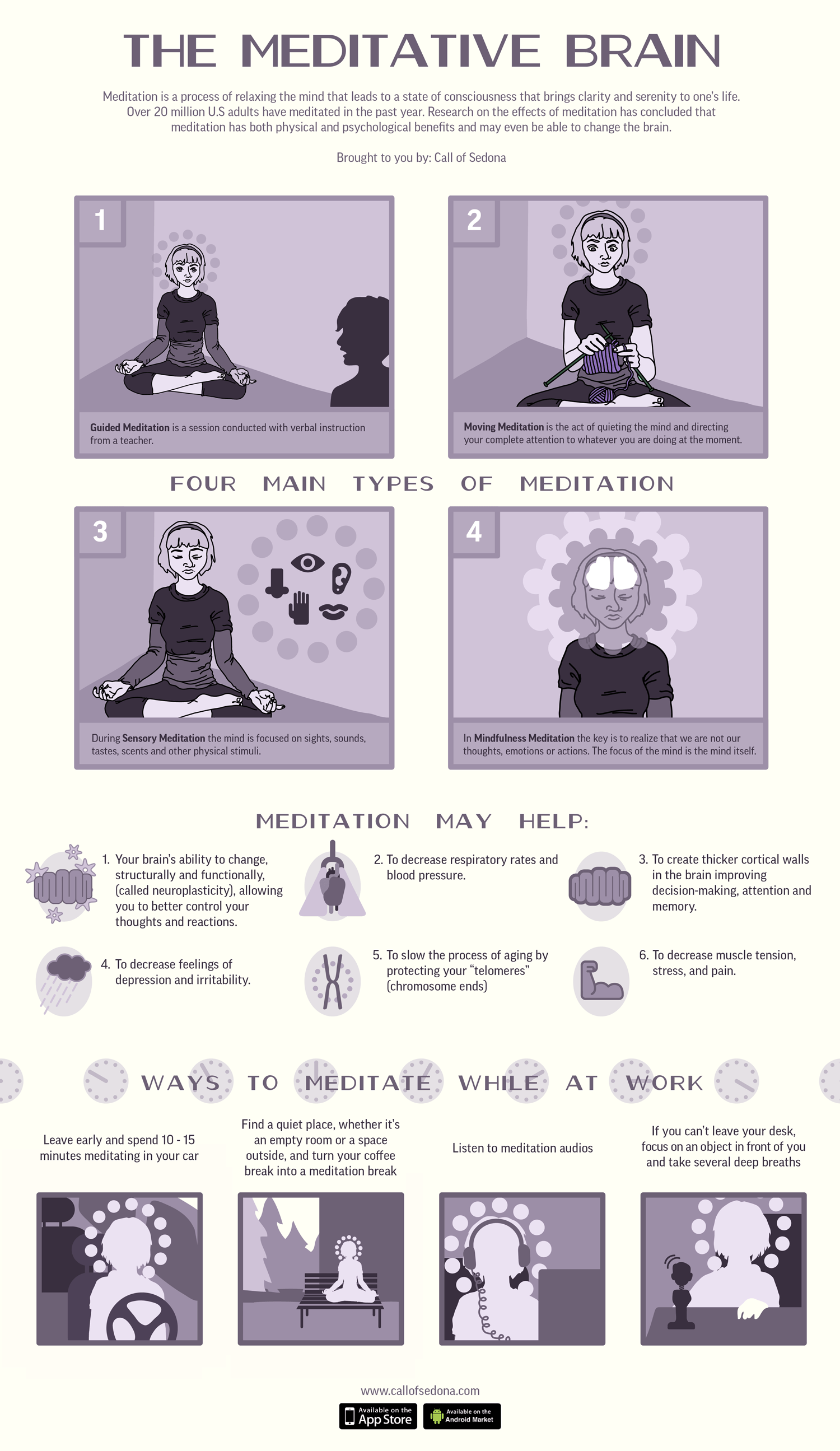The Meditative Brain