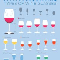 All Types of Wine Glasses