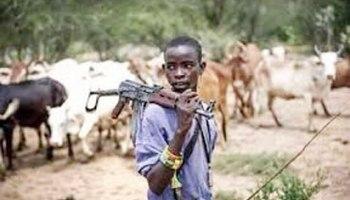 The Nexus between Climate Change and Herdsmen Crisis in Nigeria