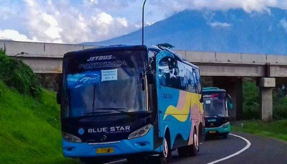 infohargasewabusjakarta-harga-sewa-bus-blue-star