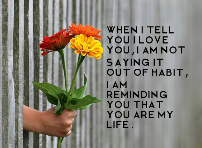 I am not saying it out of habit Attractive Picture Love Quotes