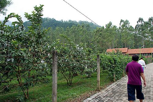 Spot-wisata-di-Batu-Malang-Kusuma-Agrowisata-Malang